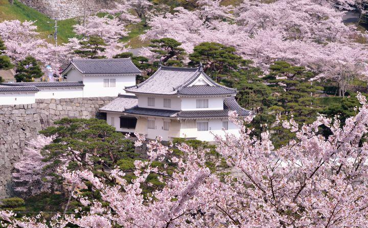 写真提供:二本松市役所観光課