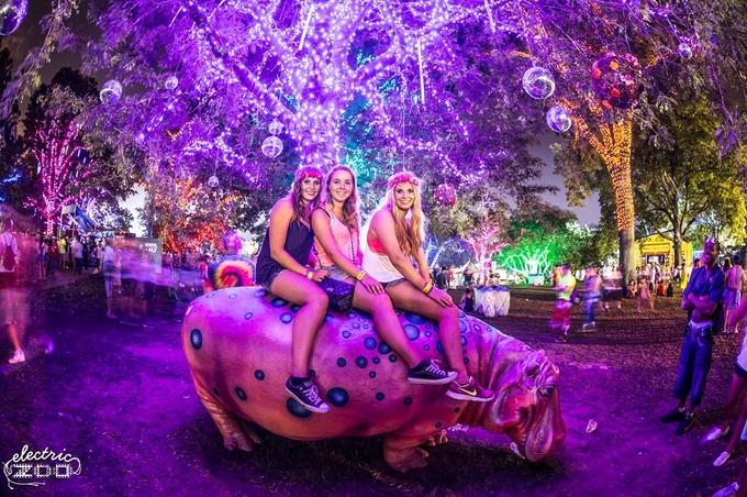 日本初上陸!NY発の世界最大級EDMフェス「electric zoo」が幕張で開催